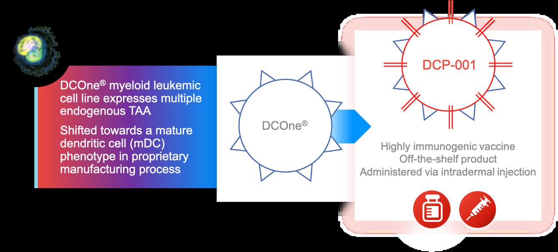 science-dcone-diagram
